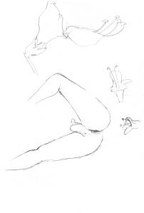 dibujos_0003